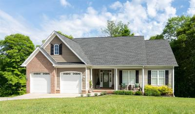 Madison Heights Single Family Home For Sale: 197 Ralls Apple Road