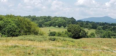 Bedford County Residential Lots & Land For Sale: Ashland Avenue