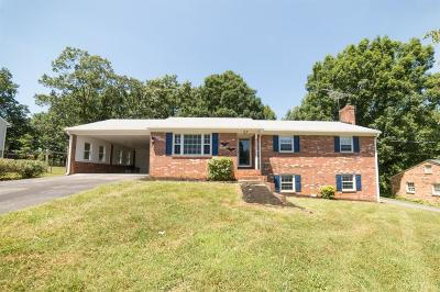 Lynchburg Single Family Home For Sale: 37 Hillsman Lane
