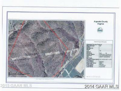 Augusta County Lots & Land For Sale: 595 Deerfield Valley Rd