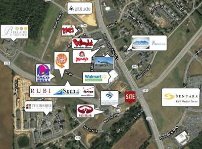 Harrisonburg Commercial For Sale: 3500 Naomis Way