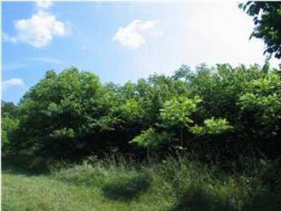 Stoney Creek (Nelson) Lots & Land For Sale: 184 Black Walnut Dr