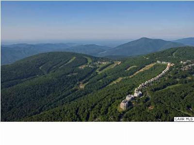 Nelson County Lots & Land For Sale: 1933 Laurel Springs Dr