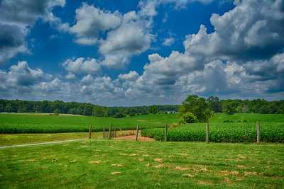 Fluvanna County Lots & Land For Sale: 2285b Antioch Rd