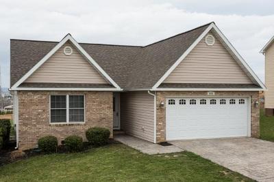 Harrisonburg Single Family Home For Sale: 2151 Mint Springs Rd