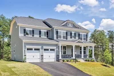Crozet Single Family Home For Sale: 50 Birchwood Hill Rd