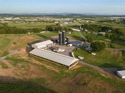 Rockingham County Farm For Sale: 690 Liskey Rd