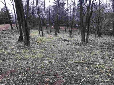 Augusta County Lots & Land For Sale: 3617 Middlebrook Village Rd