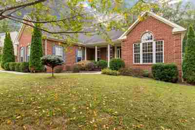 Louisa Single Family Home For Sale: 697 Reedy Creek Rd