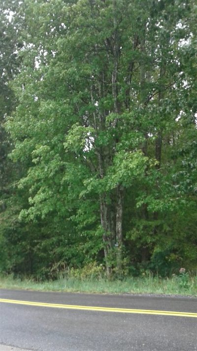 Lots & Land For Sale: 3006 Lewiston Rd