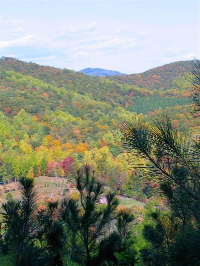 Nelson County Lots & Land For Sale: 4326 Glade Rd
