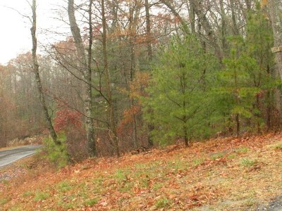 Hinton Lots & Land For Sale: Lot 19 Birds Nest Rd