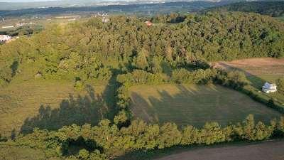 Harrisonburg Lots & Land For Sale: 10 Acres Ralston Rd