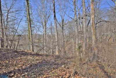 Charlottesville Lots & Land For Sale: 2200 Earlysville Rd