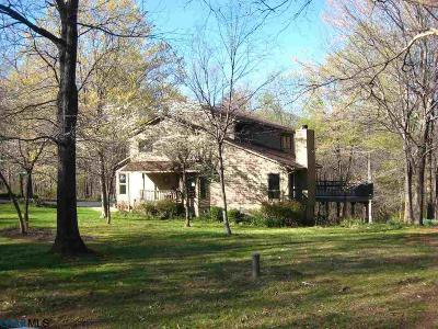 Nelson County Single Family Home For Sale: 390 Dogwood Ln