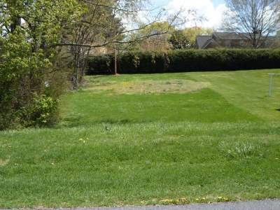 Elkton Lots & Land For Sale: Tbd Jackson Ave