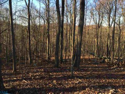 Lots & Land For Sale: G1 Quartz Hill Ln
