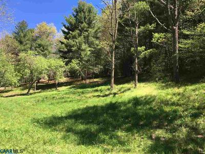 Nelson County Lots & Land For Sale: 15480 Crabtree Falls Hwy