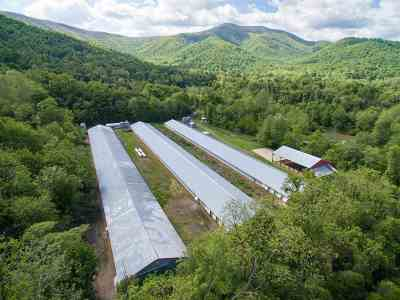 Page County Farm For Sale: 1980 Balkamore Hill Rd