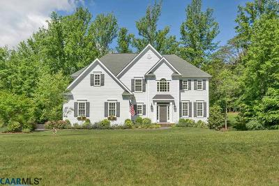 Albemarle County Single Family Home For Sale: 2732 Proffit Crossing Ln
