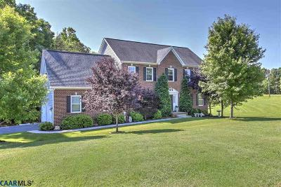Louisa Single Family Home For Sale: 2264 Byrd Mill Rd