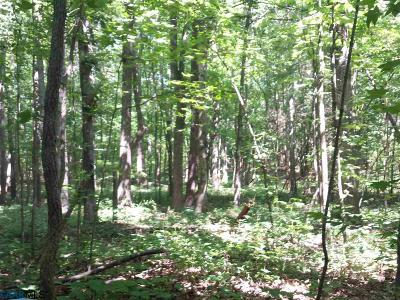 Fork Union VA Lots & Land For Sale: $80,000