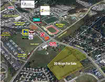 Harrisonburg Commercial For Sale: 1261 Port Republic Rd