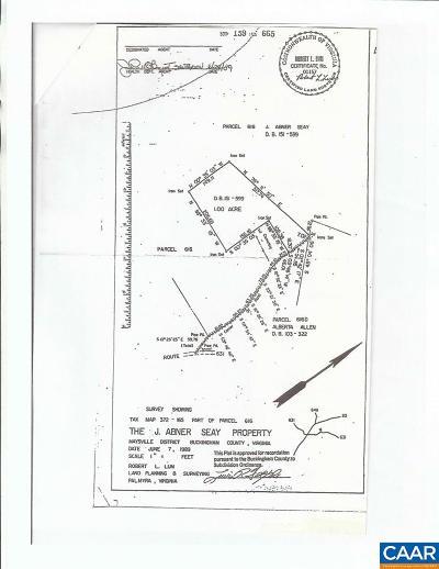 Buckingham County Lots & Land For Sale: 899 N Buffalo Dr