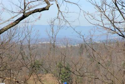 Augusta County Lots & Land For Sale: Ben Lyons Ln