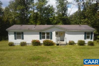 Louisa Single Family Home For Sale: 4065 Chalk Level Rd