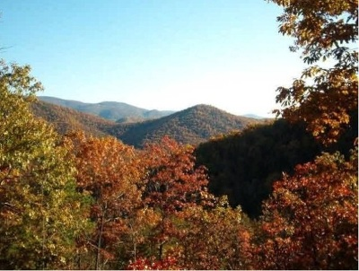 Elkton Lots & Land For Sale: 444 Grindstone Mountain View Rd