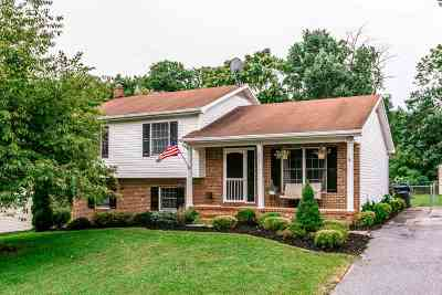 Rockingham County Single Family Home For Sale: 6261 Donnagail Dr