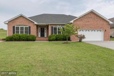 Single Family Home For Sale: 973 Clicks Ln