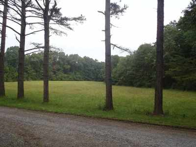 Lots & Land For Sale: Big Run Rd