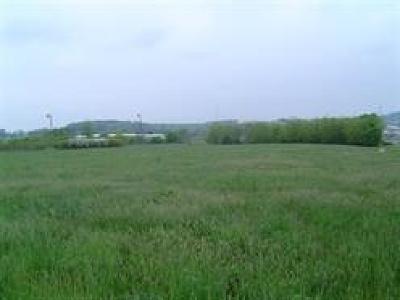 Harrisonburg Lots & Land For Sale: Early Rd