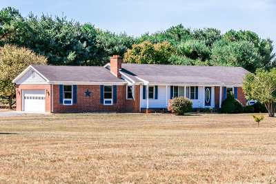 Shenandoah County Single Family Home For Sale: 480 Catfish Trail