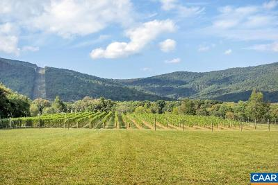 Albemarle County Lots & Land For Sale: 7131 Memory Ln