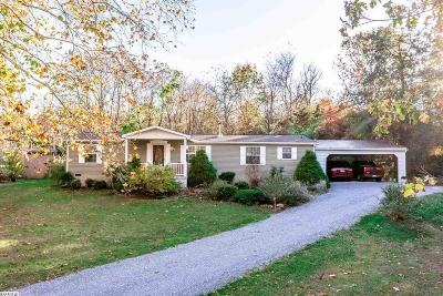 Augusta County Single Family Home For Sale: 149 Paine Run Rd