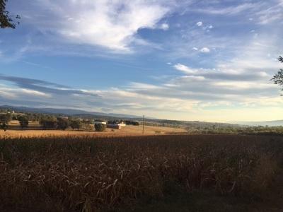 Shenandoah County Lots & Land For Sale: Wissler Rd