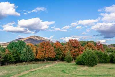 Lots & Land For Sale: Tbd Hickory Point Trl