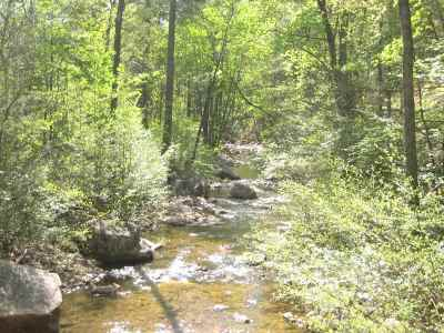 Hinton Lots & Land For Sale: Lot 39 Boulder View