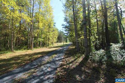 Albemarle County Lots & Land For Sale: 1 Box Holly Ln