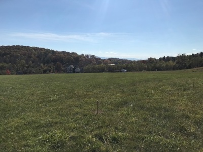 Rockingham County Lots & Land For Sale: 3190 Henry Grant Hill