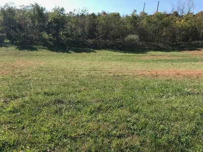 Rockingham County Lots & Land For Sale: 3230 Vera Vista Path