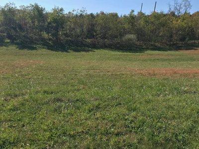 Rockingham County Lots & Land For Sale: 3190 Vera Vista Path