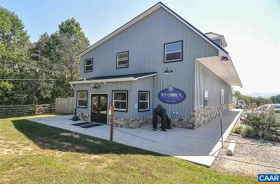 Commercial For Sale: 9374 Rockfish Valley Hwy