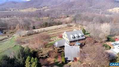 Nelson County Single Family Home For Sale: 738 Chestnut Ridge Rd