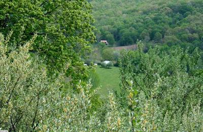 Lots & Land For Sale: 1280 Big Valley Rd