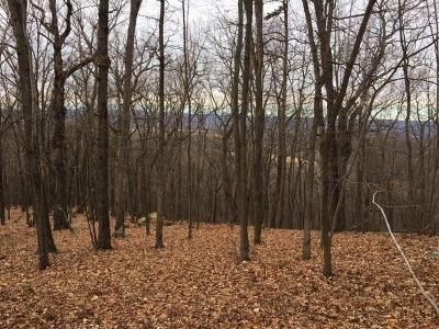 Shenandoah County Lots & Land For Sale: Powell Mountain Ln