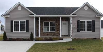 Rockingham County Single Family Home For Sale: 261 Dylan Cir